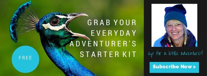 Everyday Adventurer's Starter-Kit Opt-In