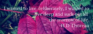Henry Thoreau Quote