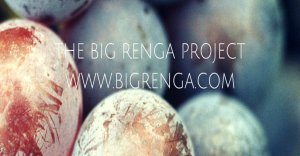 The big renga project